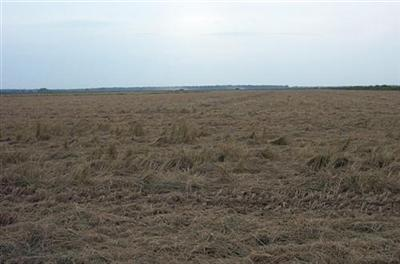 Rice Farms for Sale